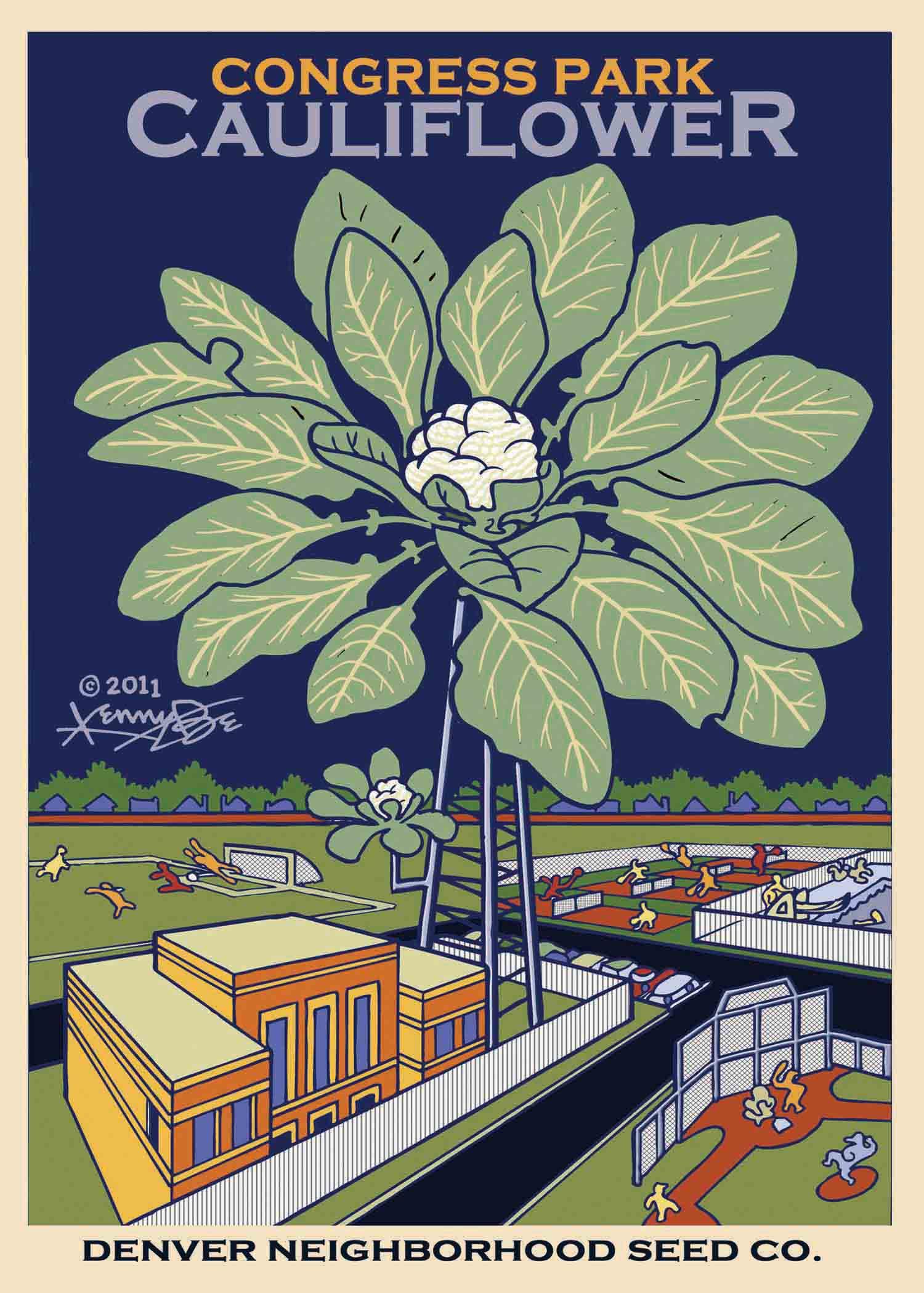 Congress+Park+Cauliflower+Denver+Neighborhood+Seed+Company+Kenny+Be+Art+&+Design